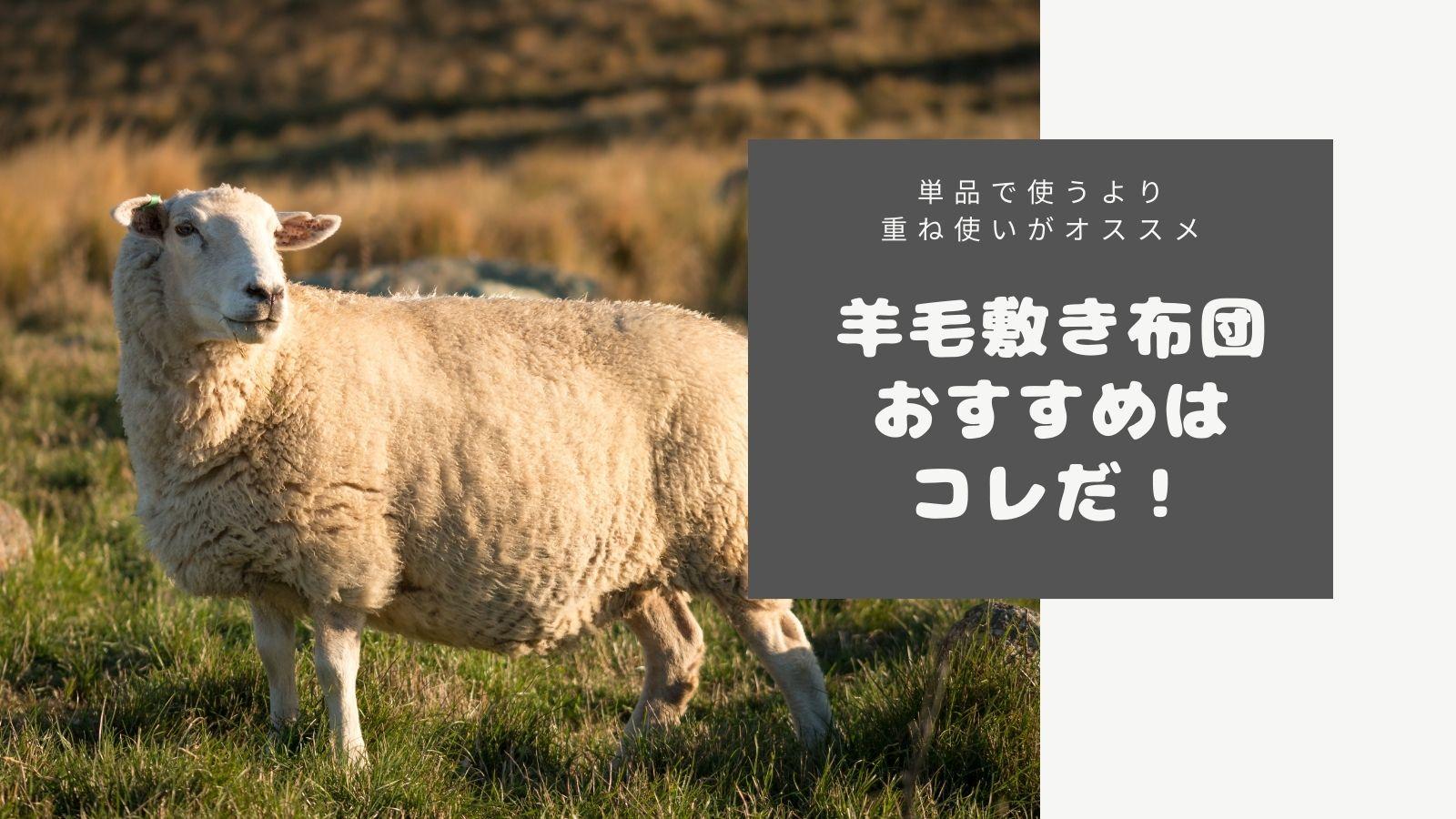羊毛敷布団のおすすめアイキャッチ